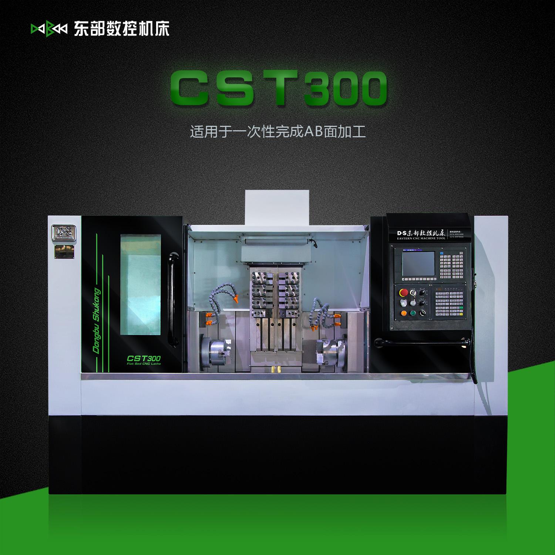 CST300